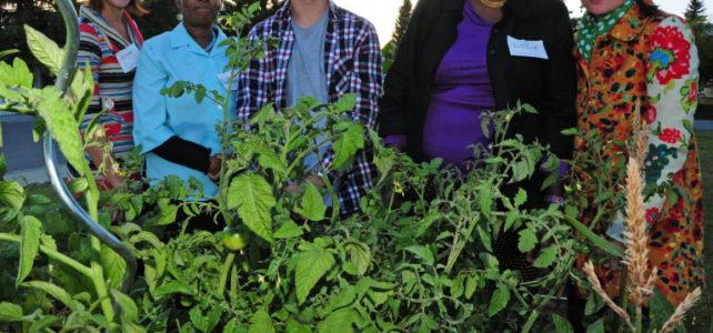 Westend Food Hub Alliance hosts workshop to get more food on the table (via Edmonton Journal)